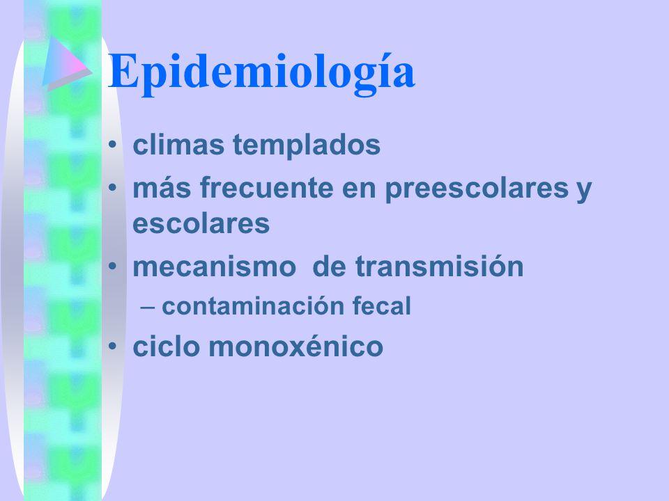 Epidemiología climas templados