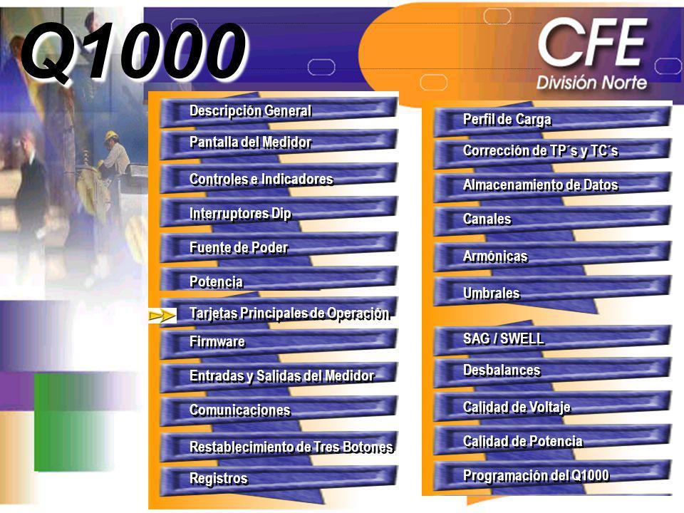 Q1000 Descripción General Perfil de Carga Pantalla del Medidor