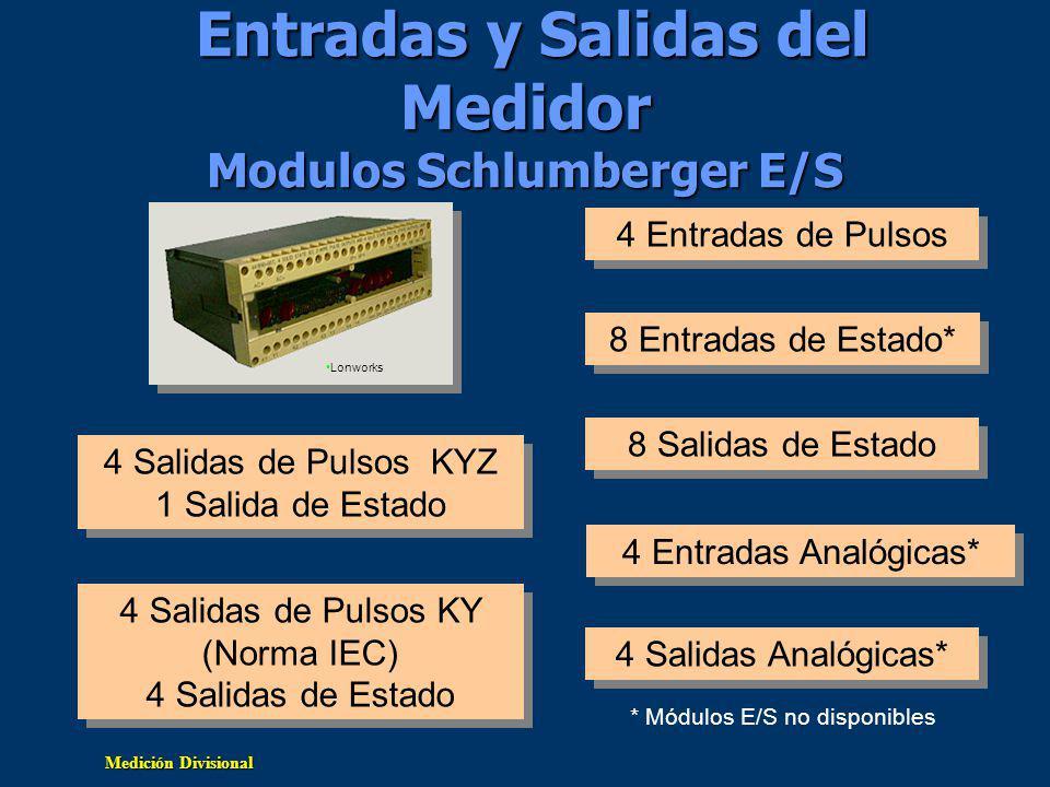 Entradas y Salidas del Medidor Modulos Schlumberger E/S