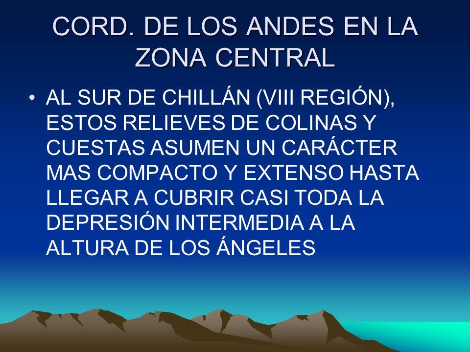 CORD. DE LOS ANDES EN LA ZONA CENTRAL