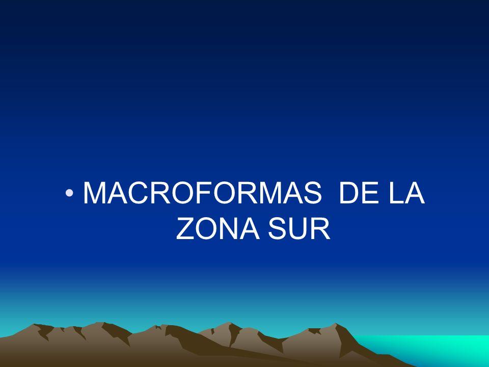 MACROFORMAS DE LA ZONA SUR