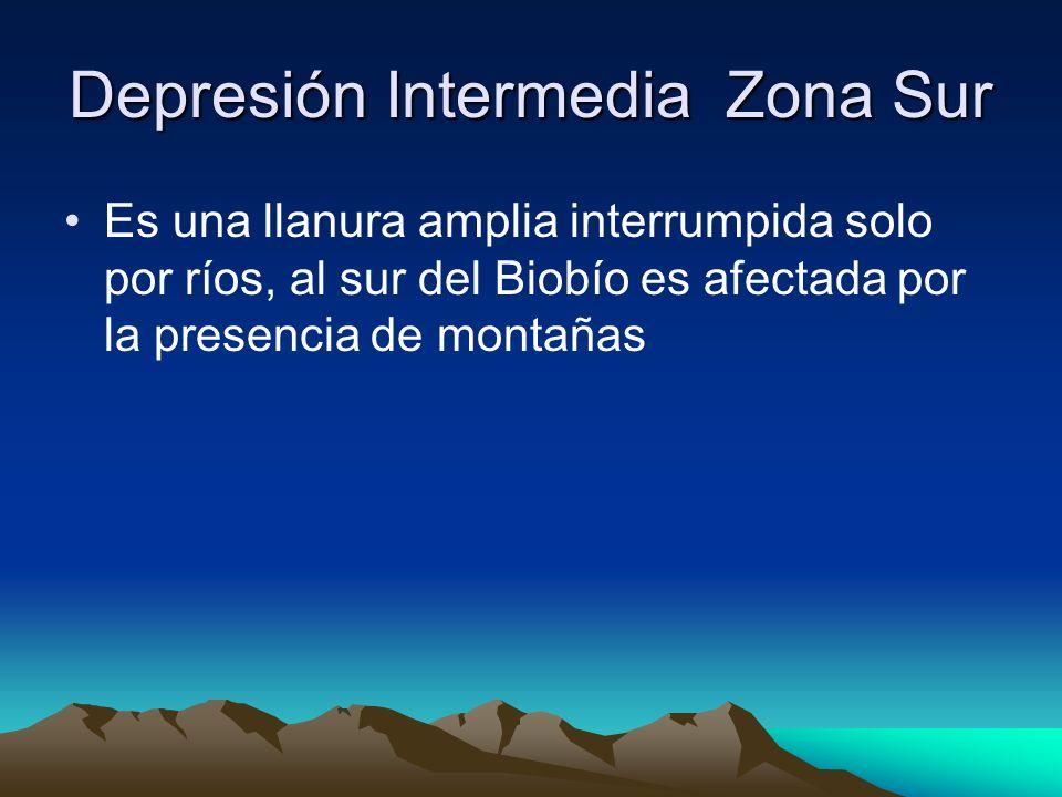 Depresión Intermedia Zona Sur