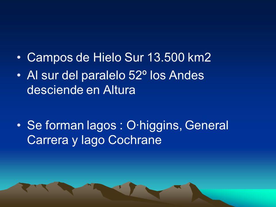 Campos de Hielo Sur 13.500 km2 Al sur del paralelo 52º los Andes desciende en Altura.