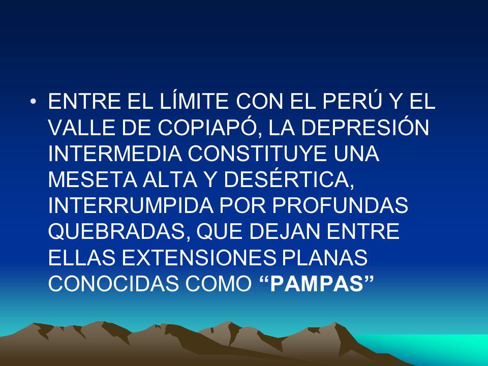 ENTRE EL LÍMITE CON EL PERÚ Y EL VALLE DE COPIAPÓ, LA DEPRESIÓN INTERMEDIA CONSTITUYE UNA MESETA ALTA Y DESÉRTICA, INTERRUMPIDA POR PROFUNDAS QUEBRADAS, QUE DEJAN ENTRE ELLAS EXTENSIONES PLANAS CONOCIDAS COMO PAMPAS