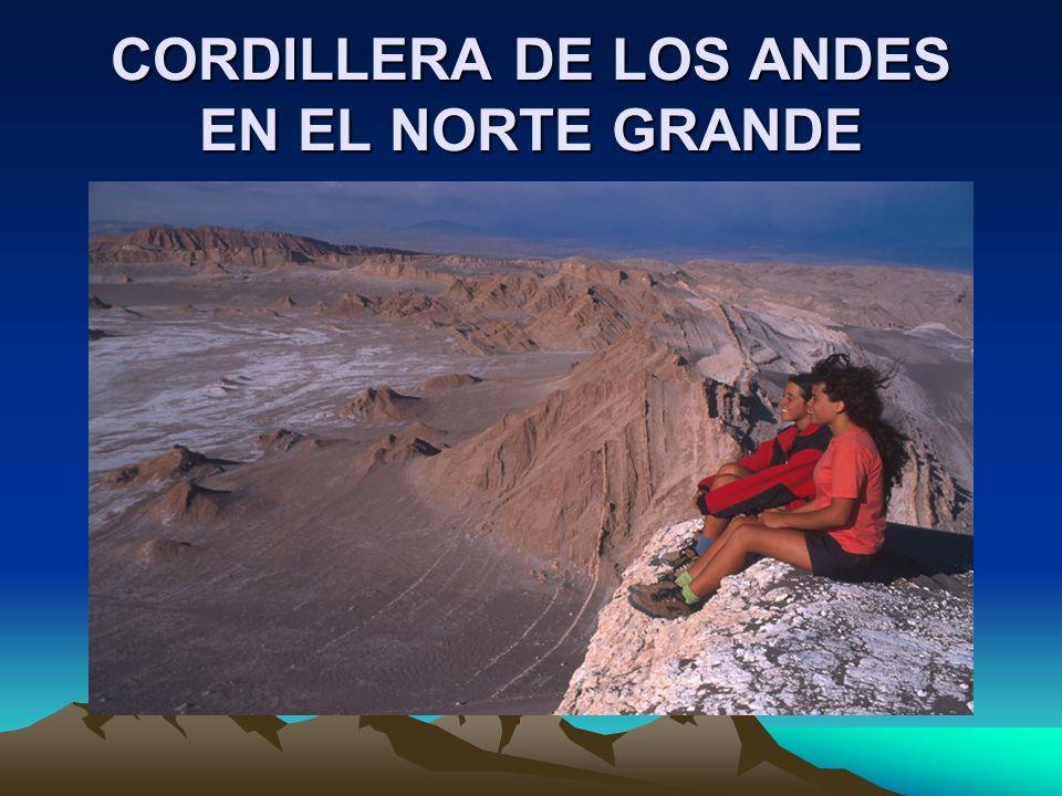 CORDILLERA DE LOS ANDES EN EL NORTE GRANDE
