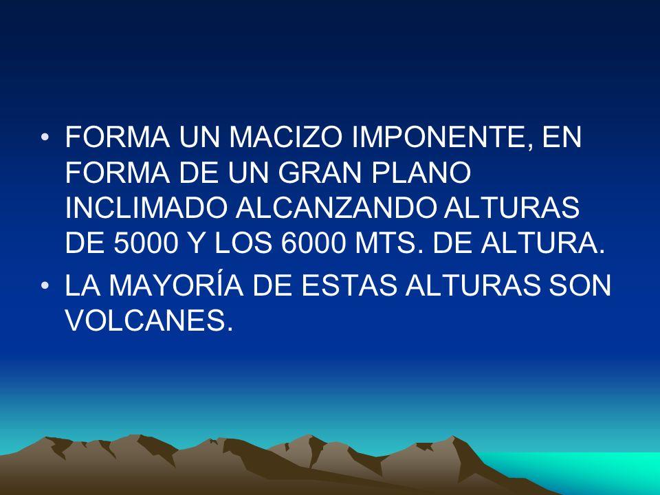 FORMA UN MACIZO IMPONENTE, EN FORMA DE UN GRAN PLANO INCLIMADO ALCANZANDO ALTURAS DE 5000 Y LOS 6000 MTS. DE ALTURA.