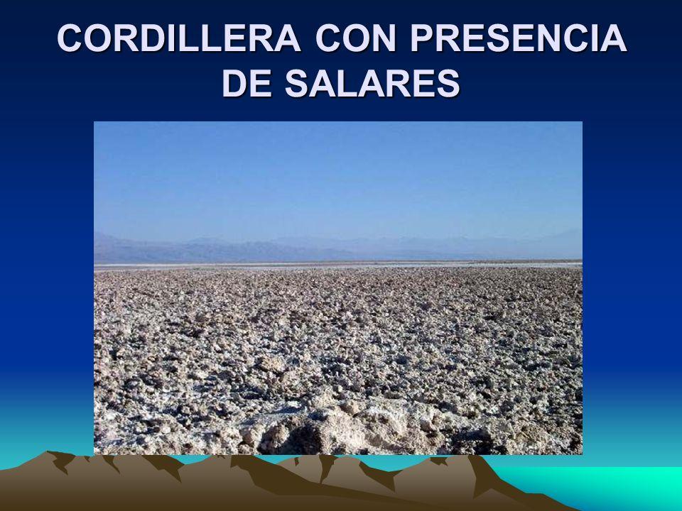 CORDILLERA CON PRESENCIA DE SALARES