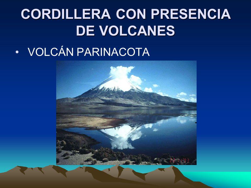 CORDILLERA CON PRESENCIA DE VOLCANES