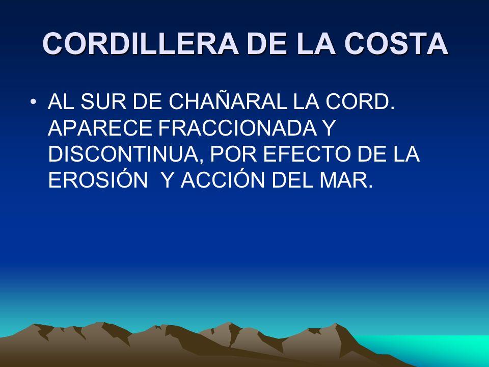 CORDILLERA DE LA COSTA AL SUR DE CHAÑARAL LA CORD.