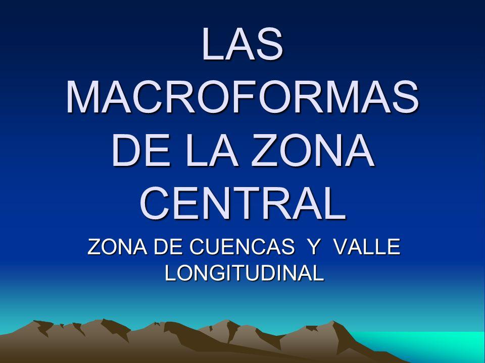 LAS MACROFORMAS DE LA ZONA CENTRAL