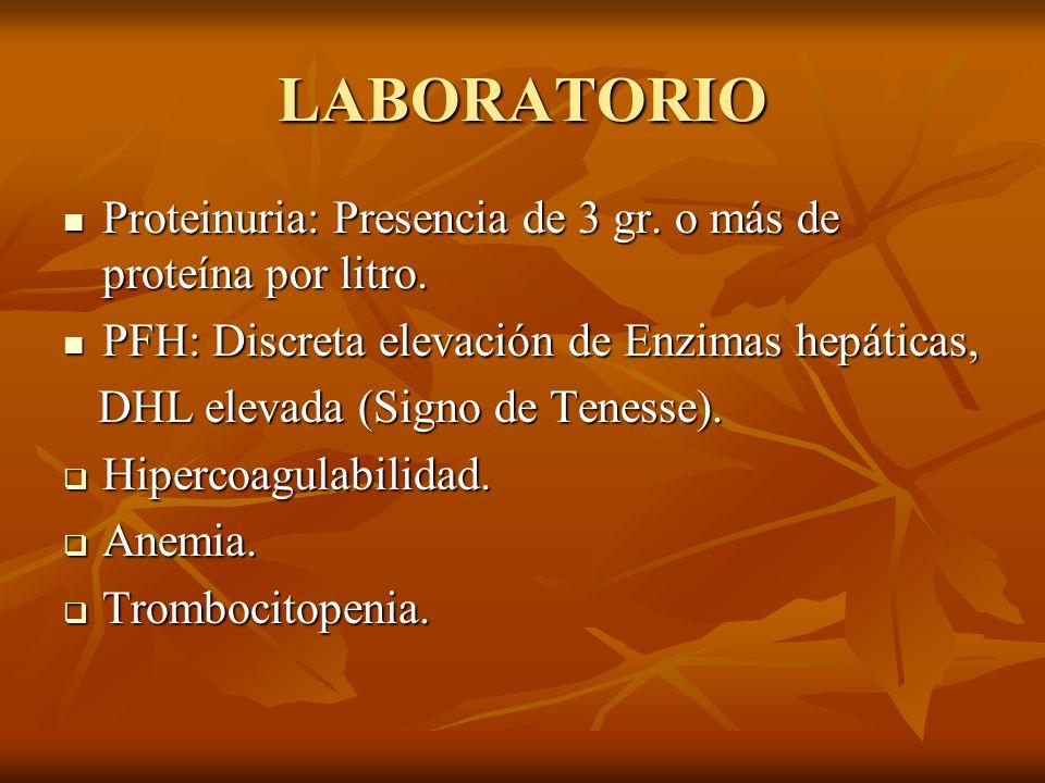 LABORATORIO Proteinuria: Presencia de 3 gr. o más de proteína por litro. PFH: Discreta elevación de Enzimas hepáticas,