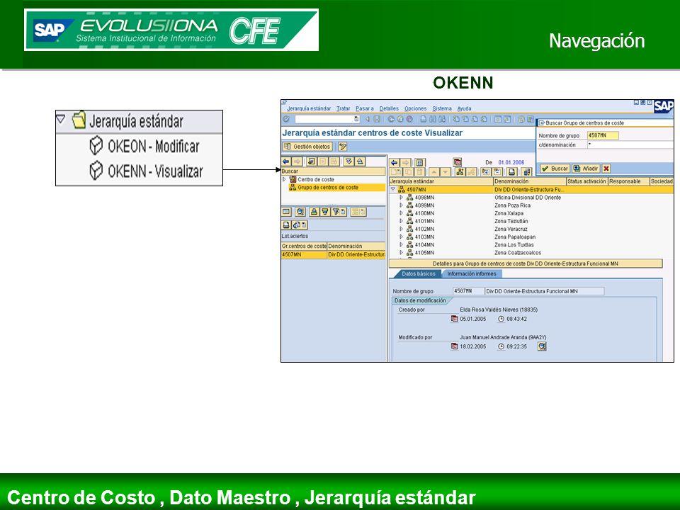 Centro de Costo , Dato Maestro , Jerarquía estándar