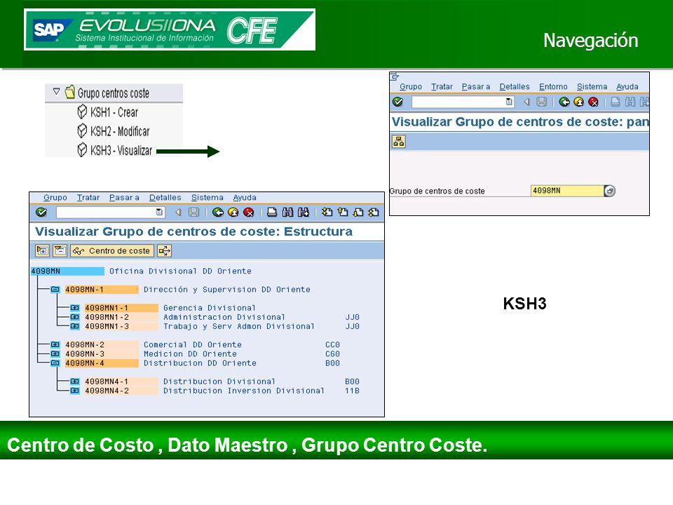 Centro de Costo , Dato Maestro , Grupo Centro Coste.