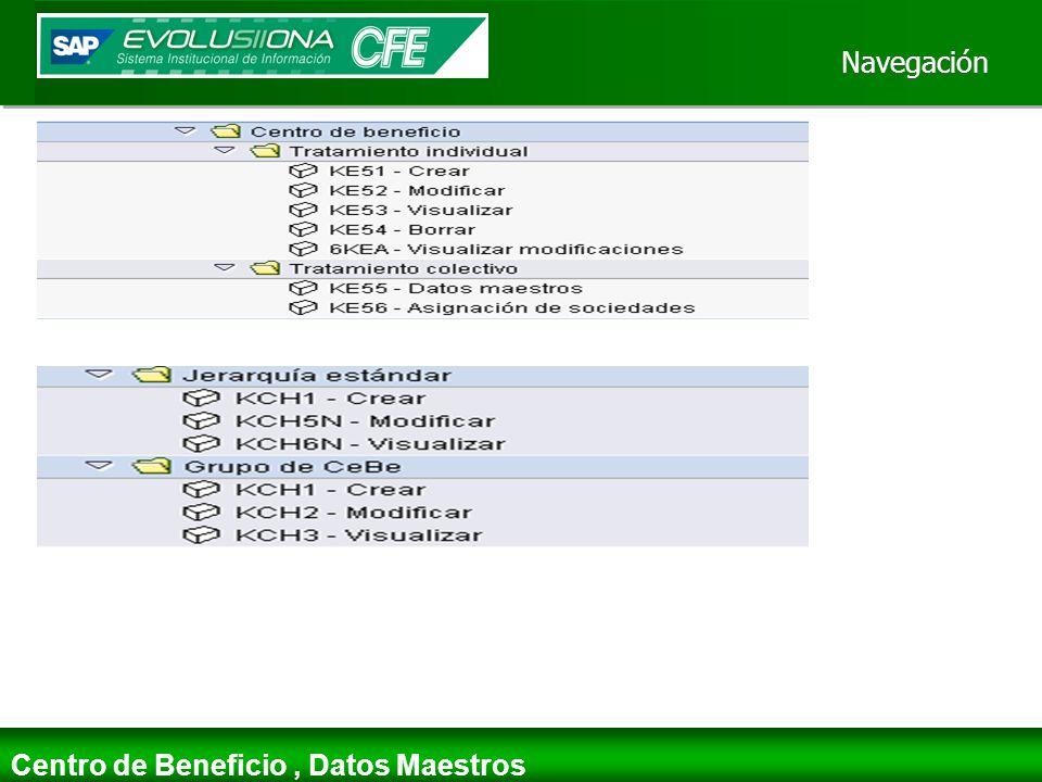 Navegación Centro de Beneficio , Datos Maestros