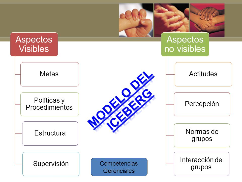 Modelo del Iceberg Metas Políticas y Procedimientos Estructura