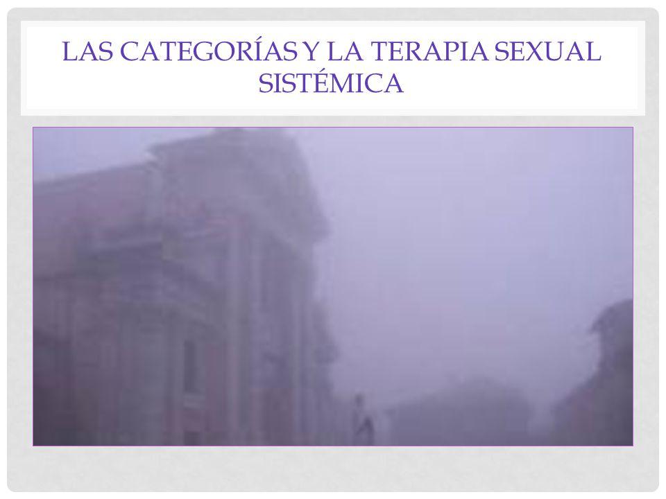 LAS CATEGORÍAS Y LA TERAPIA SEXUAL SISTÉMICA
