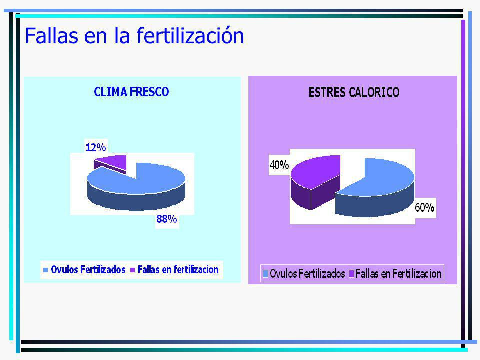Fallas en la fertilización
