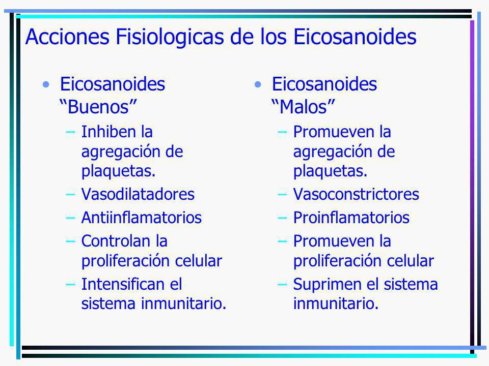 Acciones Fisiologicas de los Eicosanoides