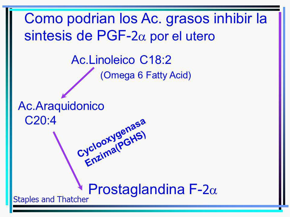 Como podrian los Ac. grasos inhibir la sintesis de PGF-2a por el utero