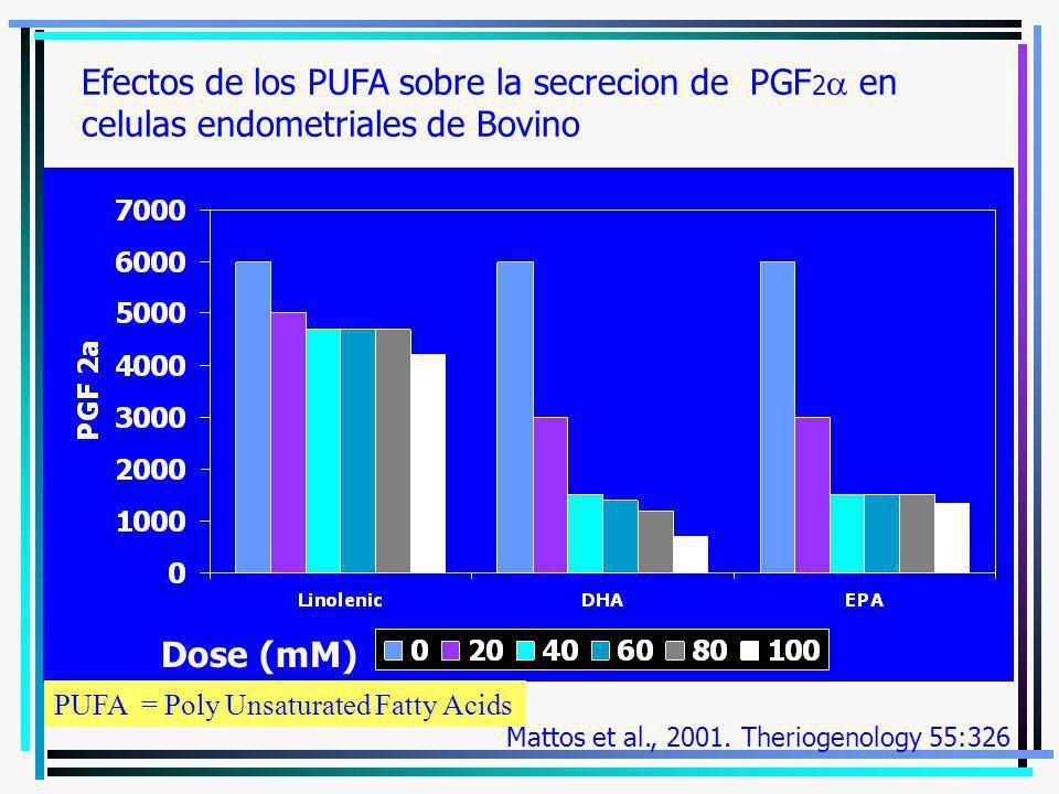 Efectos de los PUFA sobre la secrecion de PGF2a en celulas endometriales de Bovino