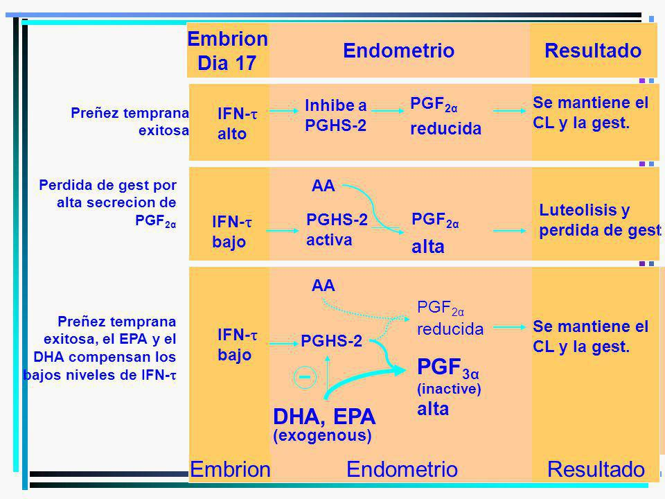 alta reducida reducida PGF3α DHA, EPA Embrion Endometrio Resultado