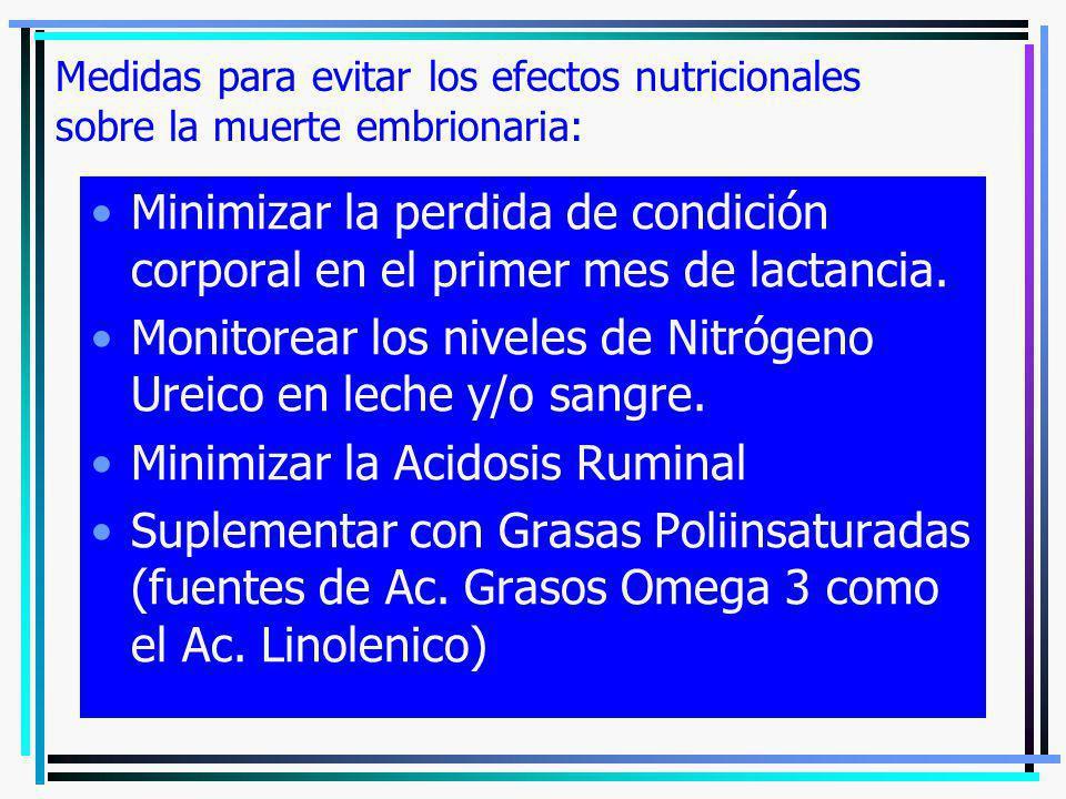 Monitorear los niveles de Nitrógeno Ureico en leche y/o sangre.