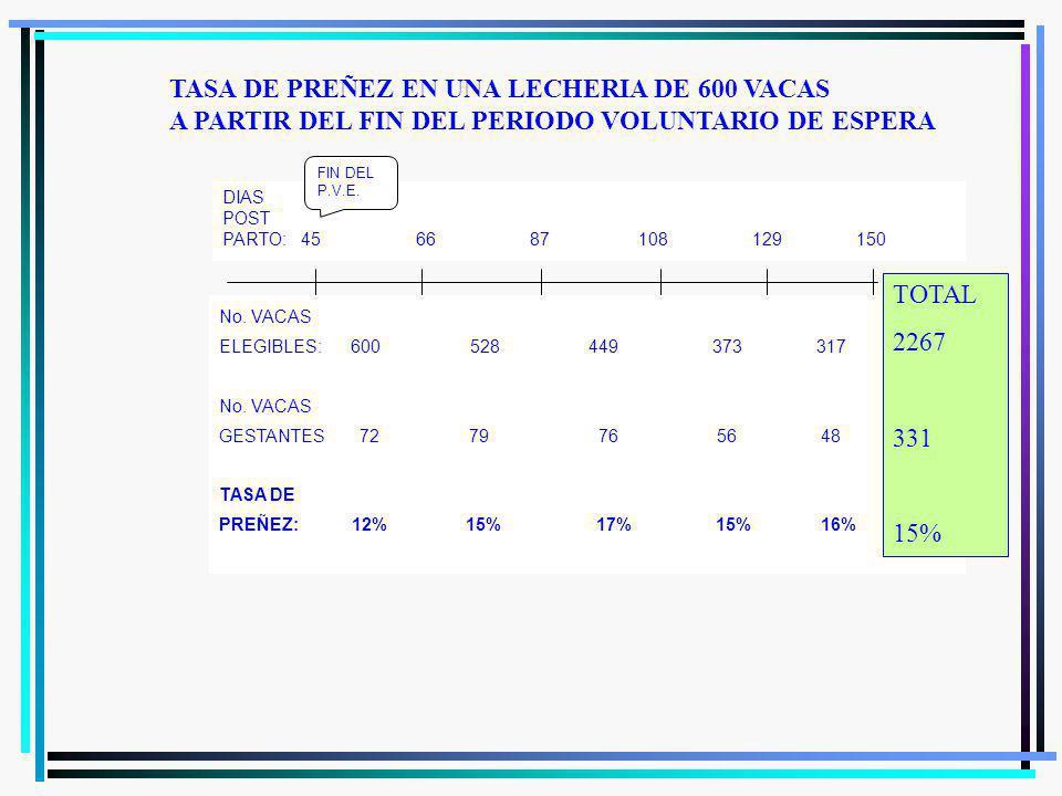TASA DE PREÑEZ EN UNA LECHERIA DE 600 VACAS