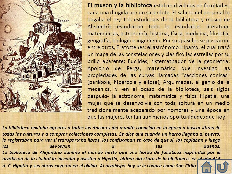 El museo y la biblioteca estaban divididos en facultades, cada una dirigida por un sacerdote. El salario del personal lo pagaba el rey. Los estudiosos de la biblioteca y museo de Alejandría estudiaban todo lo estudiable: literatura, matemáticas, astronomía, historia, física, medicina, filosofía, geografía, biología e ingeniería. Por sus pasillos se pasearon, entre otros, Eratóstenes; el astrónomo Hiparco, el cual trazó un mapa de las constelaciones y clasificó las estrellas por su brillo aparente; Euclides, sistematizador de la geometría; Apolonio de Perga, matemático que investigó las propiedades de las curvas llamadas secciones cónicas (parábola, hipérbola y elipse); Arquímedes, el genio de la mecánica, y -en el ocaso de la biblioteca, seis siglos después- la astrónoma, matemática y física Hipatia, una mujer que se desenvolvía con toda soltura en un medio tradicionalmente acaparado por hombres y una época en que las mujeres tenían aun menos oportunidades que hoy.