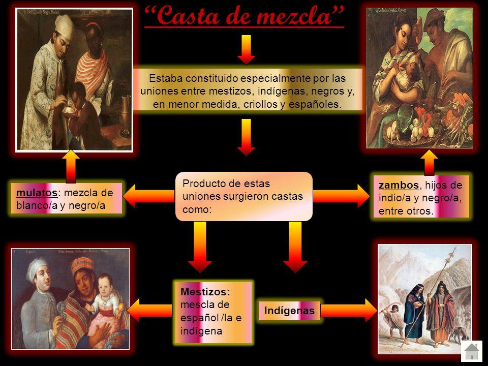 Casta de mezcla Estaba constituido especialmente por las uniones entre mestizos, indígenas, negros y, en menor medida, criollos y españoles.