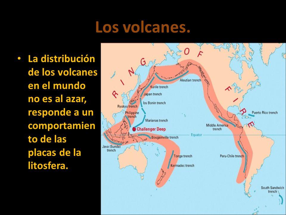 Los volcanes.La distribución de los volcanes en el mundo no es al azar, responde a un comportamiento de las placas de la litosfera.