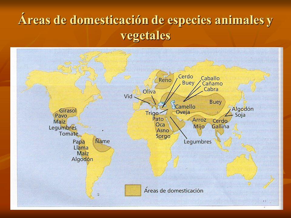 Áreas de domesticación de especies animales y vegetales