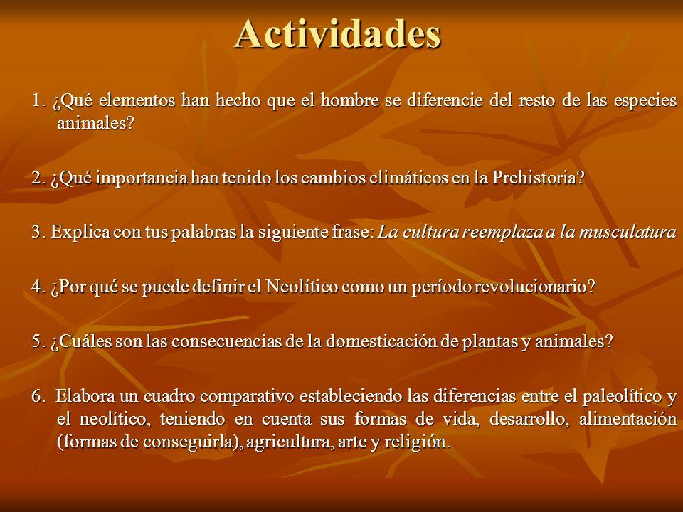 Actividades 1. ¿Qué elementos han hecho que el hombre se diferencie del resto de las especies animales