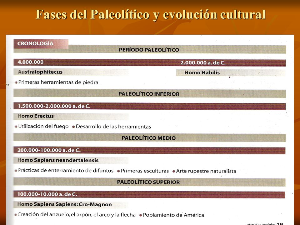 Fases del Paleolítico y evolución cultural