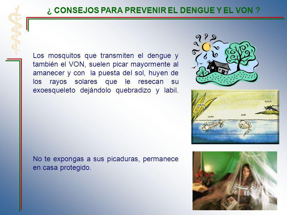 ¿ CONSEJOS PARA PREVENIR EL DENGUE Y EL VON