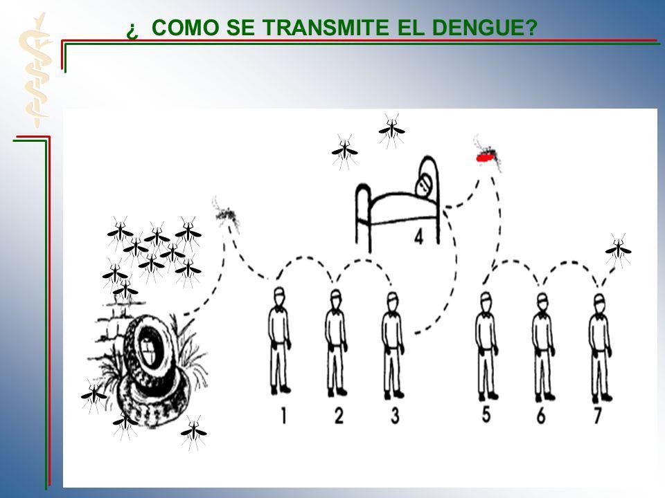 ¿ COMO SE TRANSMITE EL DENGUE