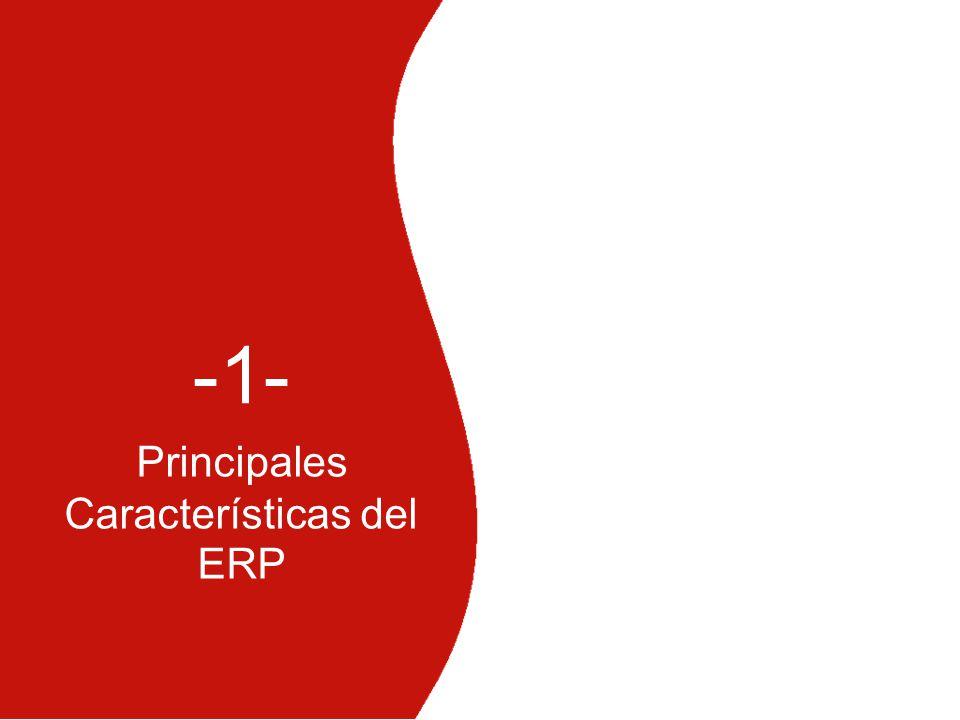 Principales Características del ERP