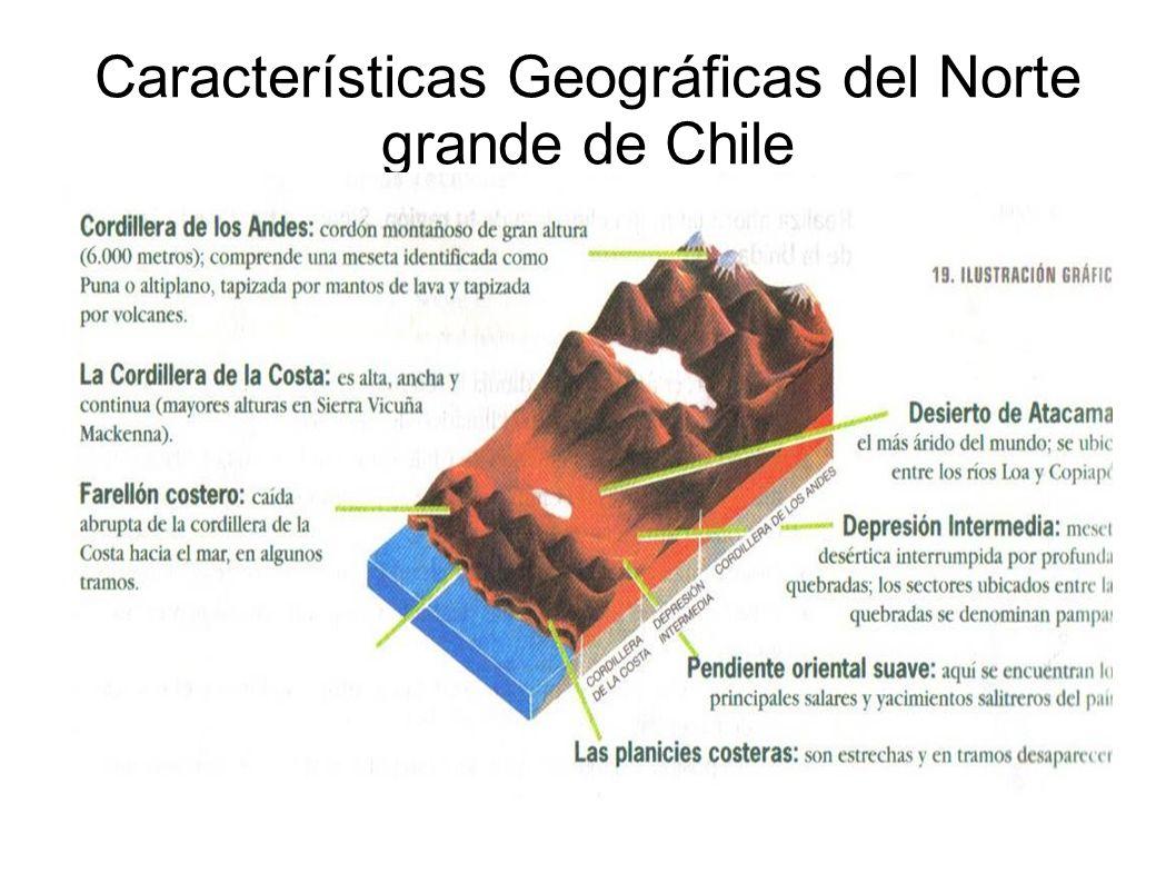 Características Geográficas del Norte grande de Chile