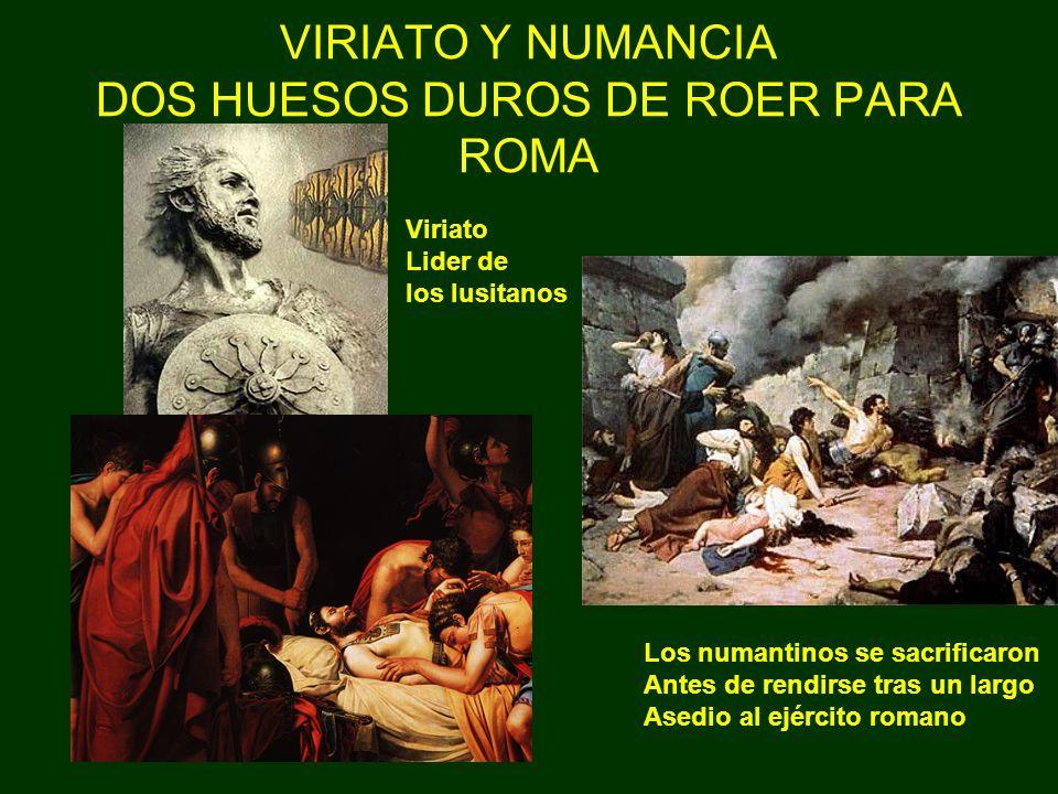 VIRIATO Y NUMANCIA DOS HUESOS DUROS DE ROER PARA ROMA