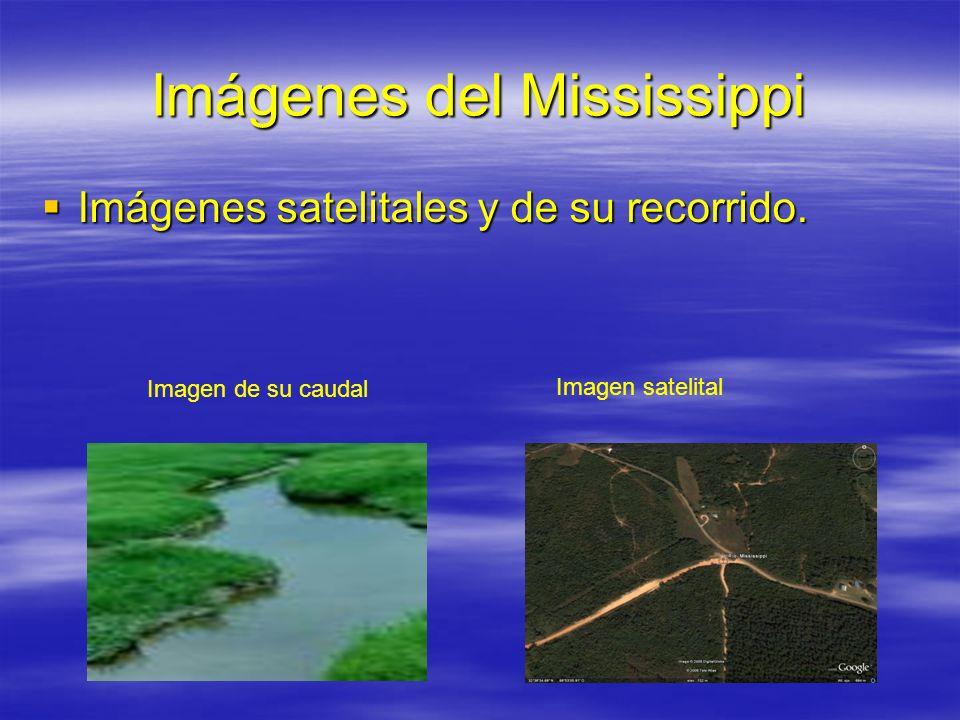 Imágenes del Mississippi