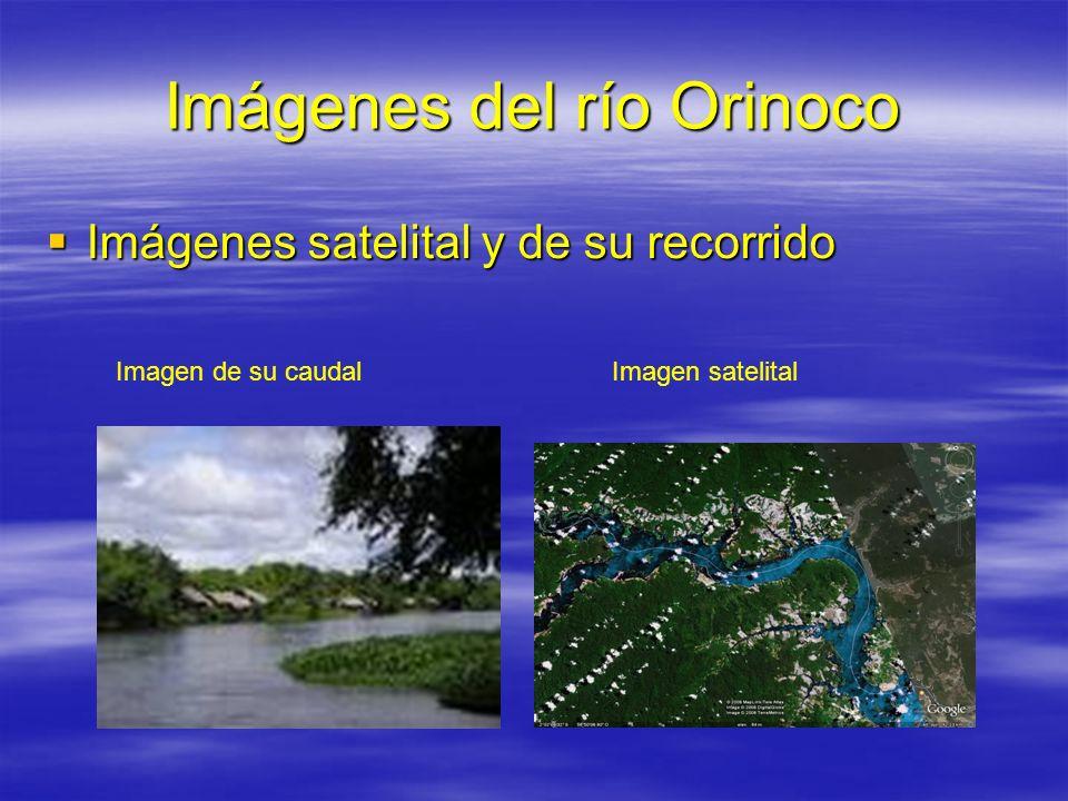 Imágenes del río Orinoco