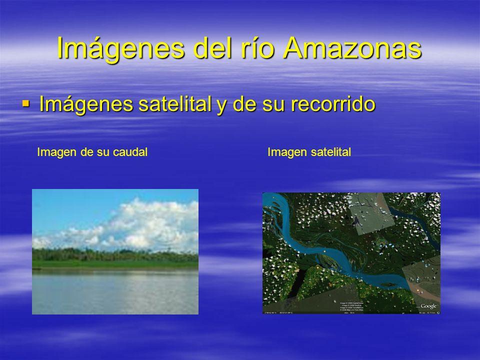 Imágenes del río Amazonas