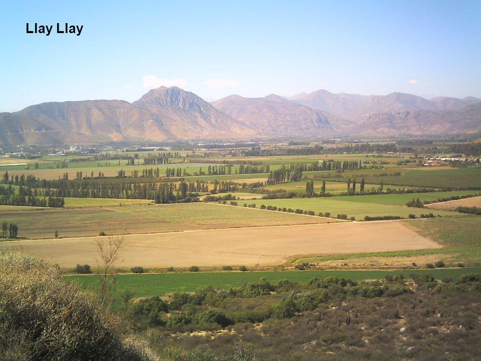 Llay Llay