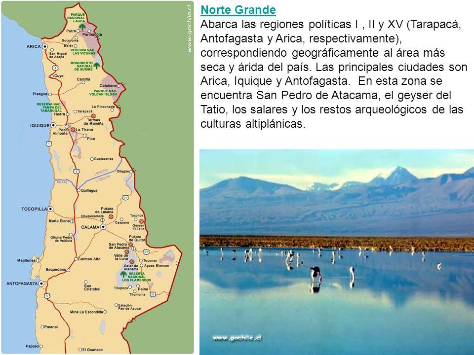 Norte Grande Abarca las regiones políticas I , II y XV (Tarapacá, Antofagasta y Arica, respectivamente), correspondiendo geográficamente al área más seca y árida del país.