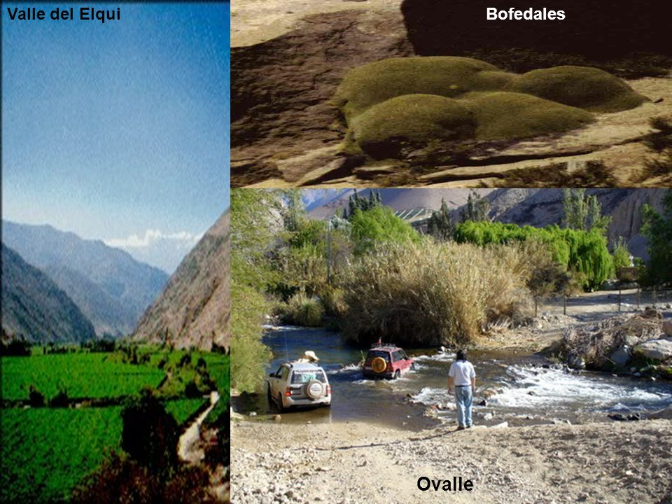 Valle del Elqui Bofedales Ovalle