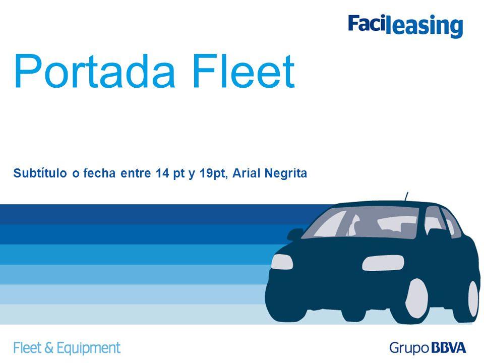 Portada Fleet Subtítulo o fecha entre 14 pt y 19pt, Arial Negrita