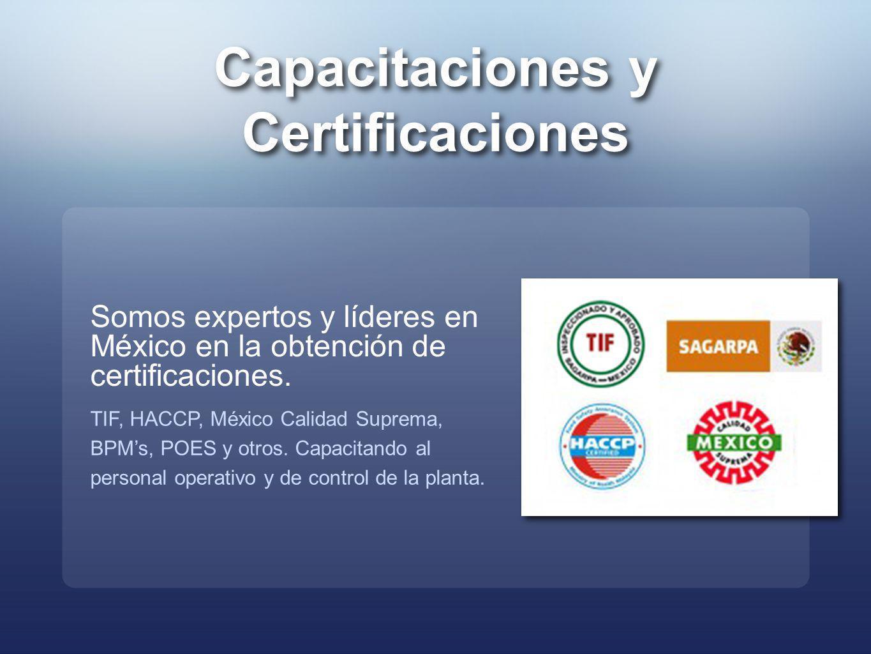 Capacitaciones y Certificaciones