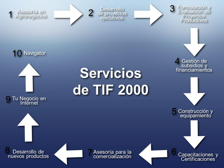 3 Formulación y Evaluación de Proyectos Productivos. Desarrollo. de proyectos ejecutivos. 2. 1.