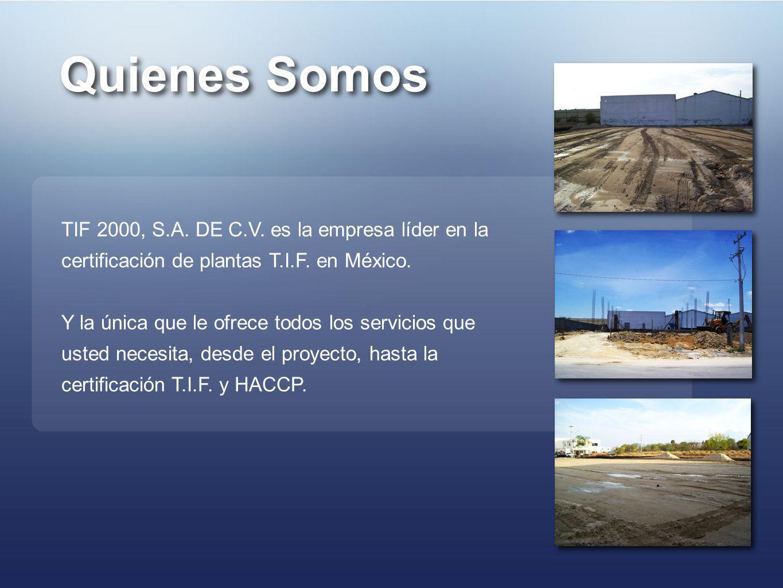 Quienes Somos TIF 2000, S.A. DE C.V. es la empresa líder en la certificación de plantas T.I.F. en México.