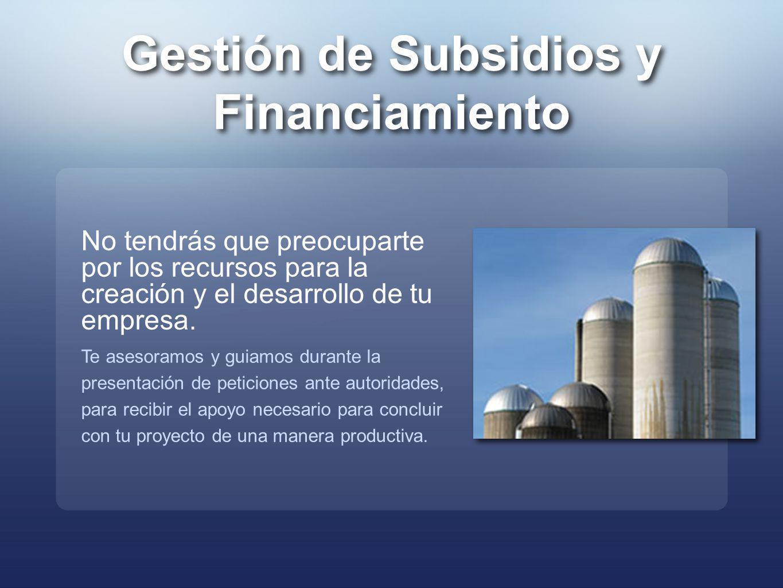 Gestión de Subsidios y Financiamiento