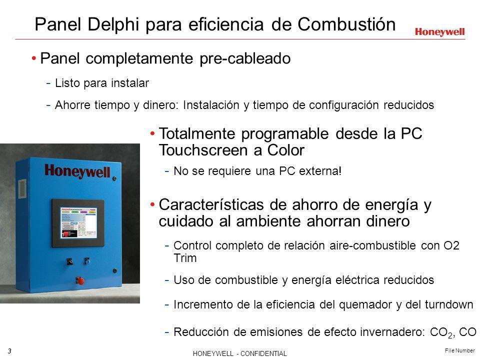 Panel Delphi para eficiencia de Combustión